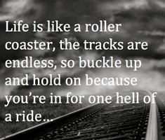 Life is one Roller coster Ride... by Lifes-what-u-make-it