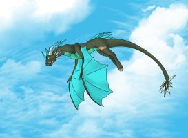 Flight through the Clouds by Dragon-Wolf997