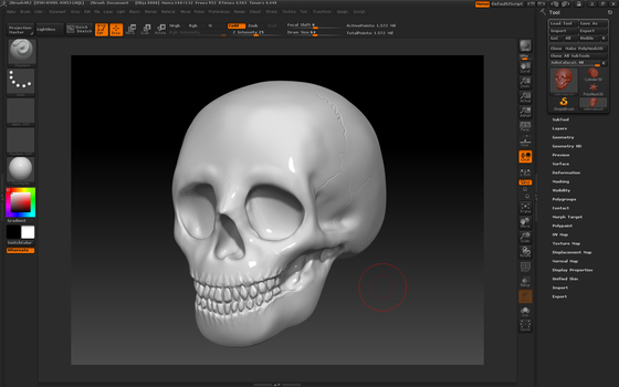 Skull made in ZBrush by Cyberemite