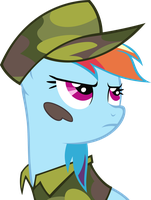 Rainbow Dash in camouflage by JeffThunderbolt