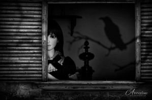 The Raven by Anna-line