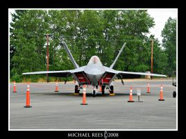 F-22 Raptor front view by Luv2suspendyou