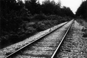 tracks by campbell16