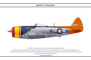 P-47 USAAF 366th FS 1 by WS-Clave