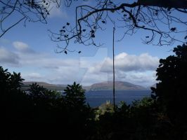 View from Rothesay woods by corrinapalmer