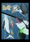 Orca Transformation  Page [2/2] by Nolhyaa