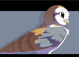 William the Barn Owl by MBPanther