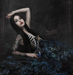 Blue Roses by FlexDreams