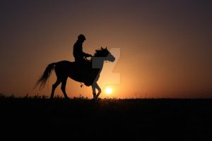 Riding Horse... by VoldroY