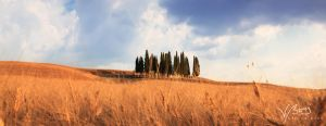Val d'Orcia by gummaid