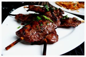 Teriyaki Beef Skewers by electric-lime