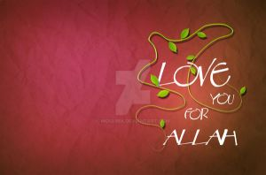 love you for allah by moslima