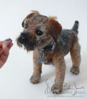 Trouble the border terrier by FamiliarOddlings
