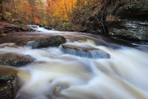 Ricketts Glen II by Brettc