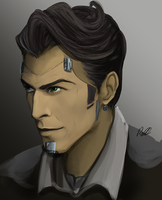 Handsome jackass by redelice