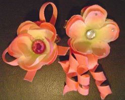Pink and Peach Flower Duo by Ms-Mordant