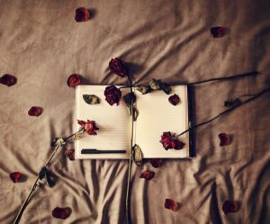 12/52 My Diary of Dying Roses by VelvetRedBullet