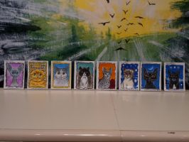 ACEO Cats by amberchrome