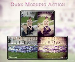 Dark Morning Action by Maryanne007