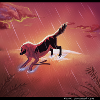 Sunset Rain by Klissie