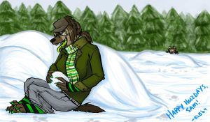 Snow Man's Land by tigglespits