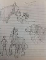 Jock the Clydesdale practice sketches by Chrissyissypoo19
