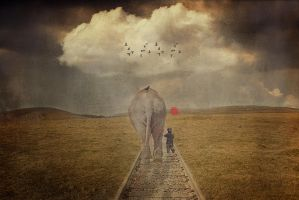 Walking with an Elephant by paulcresswell