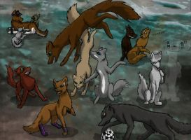 CIT - wolfpack by Crazy-Book-Worm