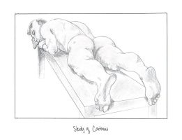 Study of Cadmus by Jibril419