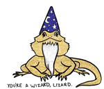 Wizard Lizard by jdrainville