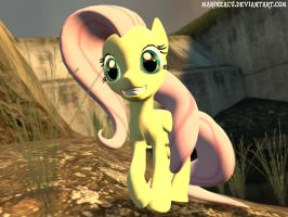 MLP: Just Fluttershy by MarineACU