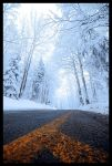 Shooting star by paikan07