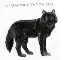 Wild fangs - Wolf's eyes by Anna-XIII