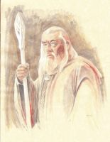 Gandalf Study in color by kohse