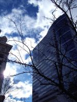 Urban Sky by Tanager