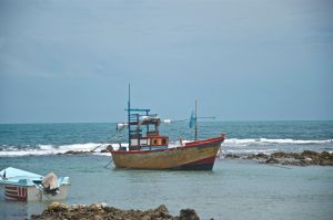 Fishing. Jaffna. Sri Lanaka by jennystokes