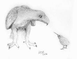 Fuzzy the Kiwi Finds a Friend by Morrgan