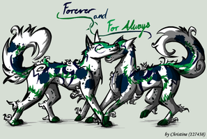 Forever and For Always by TinTans