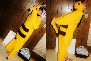 over the internetz noone knows im a pikachu by BemisSmith
