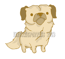 DOODLE POPPER - TIBETAN SPANIEL by ELECTRICPOPPERS