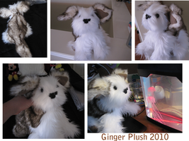 Ginger Plush by Ramvling