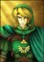 Link: Legendary Hero by Fenrisfang