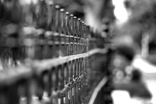 Fence dof bw by dgnaber