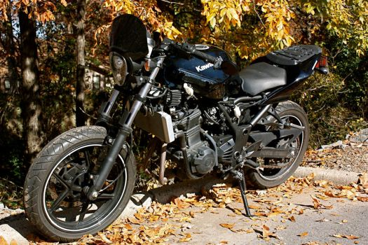 EX250 Street Fighter by smleimberg