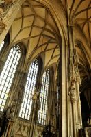 St Stephens Cathedral interior, Vienna by wildplaces
