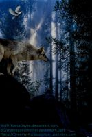 Wolf and Dove by 14658