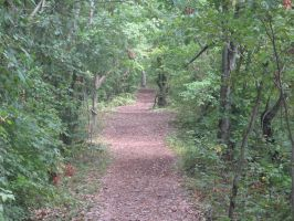 Panther Creek Trail by Ashleyley92