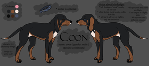 coon ref by thelunacy-fringe
