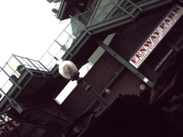 Fenway Park II by caitlinwithasea