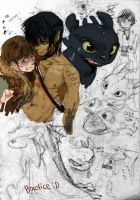 toothless and hiccup by nechy0